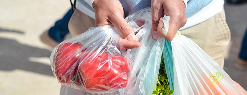 buste di plastica biodegradabili
