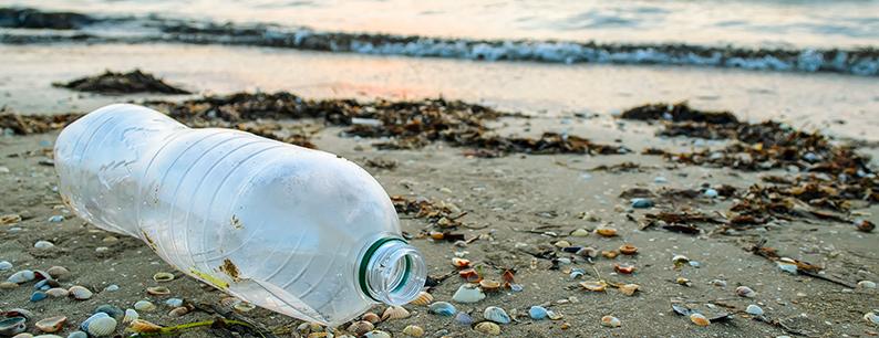 L'inquinamento ambientale da microplastiche