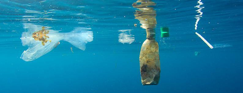 Riciclo della plastica, l'inquinamento marino