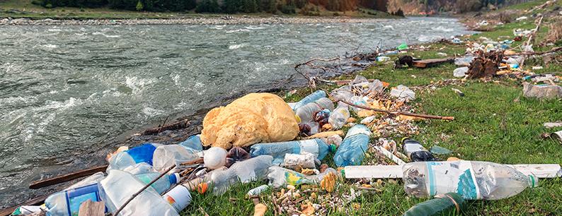 Bottiglie di plastica e rifiuti sulle rive di un fiume