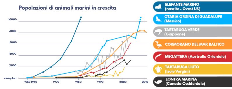 Riqualificare i mari permette la ricrescita della popolazione di animali marini marina