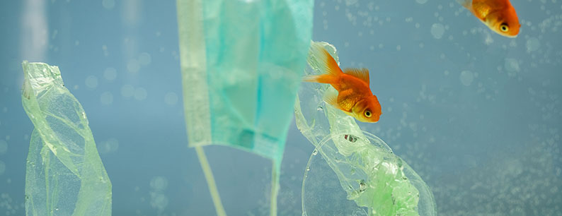 consumo-di-plastica-durante-la-pandemia