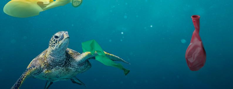Inquinamento mari