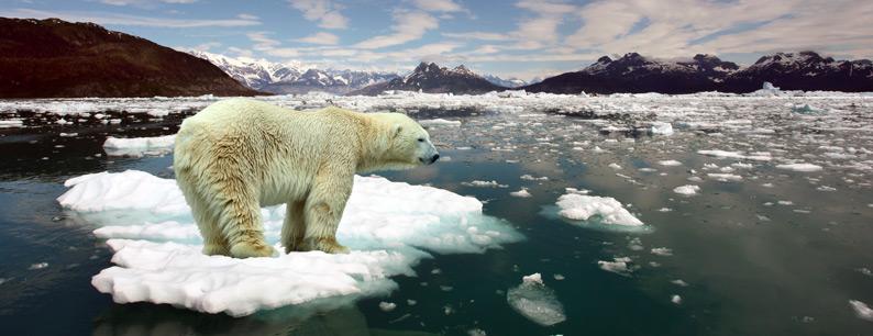 scioglimento dei ghiacciai dovuto al surriscaldamento globale